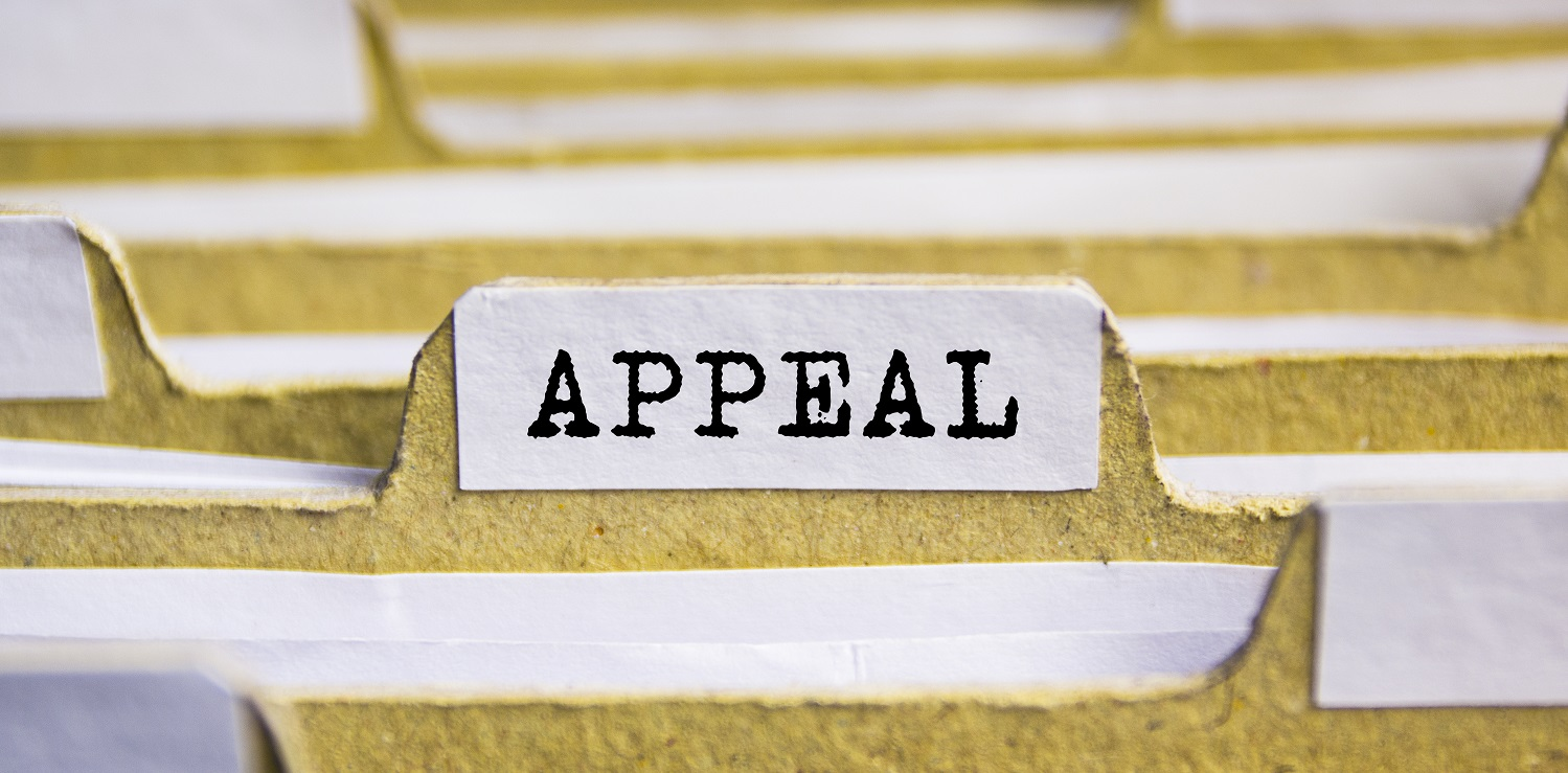 Employee disciplinary appeal